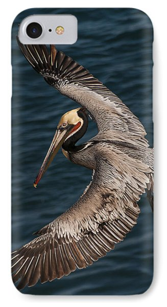 IPhone Case featuring the photograph Brown Pelican Landing 2 by Lee Kirchhevel