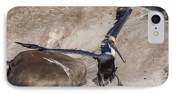 Brown Pelican Landing Phone Case by Darleen Stry