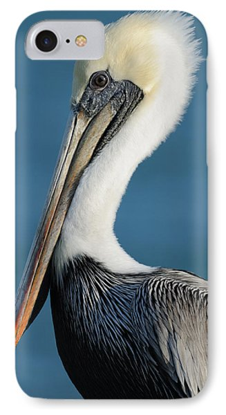 IPhone Case featuring the photograph Brown Pelican Portrait by Bradford Martin