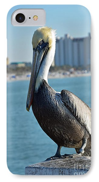 IPhone Case featuring the photograph Brown Pelican by Robert Meanor