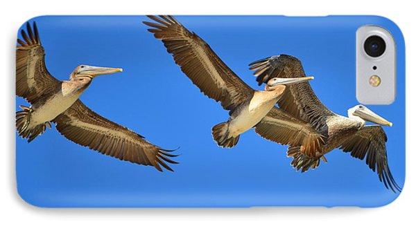 Brown Pelicans In Flight IPhone Case by Debra Martz