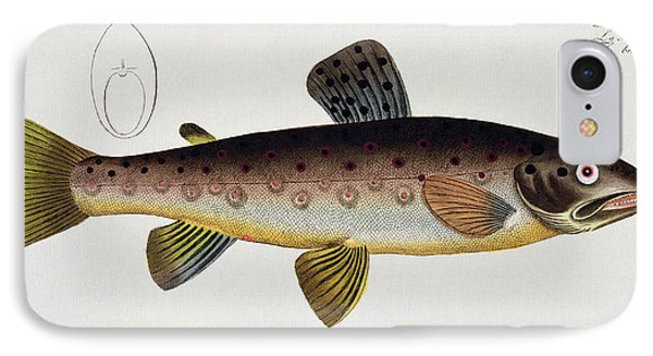 Brown Trout Phone Case by Andreas Ludwig Kruger