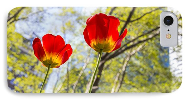 Bryant Park Tulips New York  Phone Case by Angela A Stanton