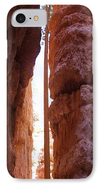 Bryce Canyon From The Bottom Panoramic IPhone Case