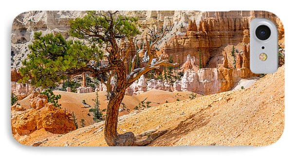 Bryce Canyon Np IPhone Case by Juergen Klust