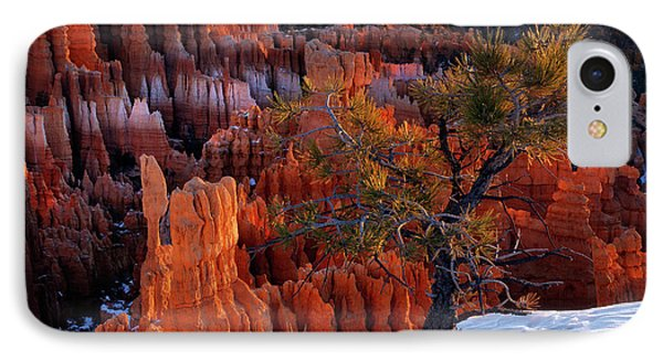 Bryce Canyon Winter Light IPhone Case by Leland D Howard