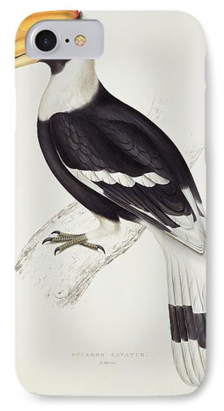 Great Hornbill IPhone Case by John Gould