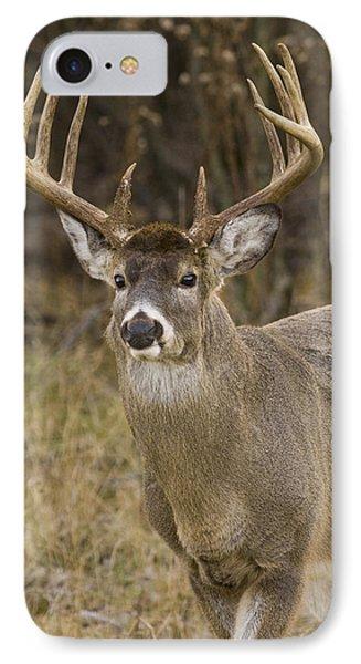 Buck Approaching IPhone Case