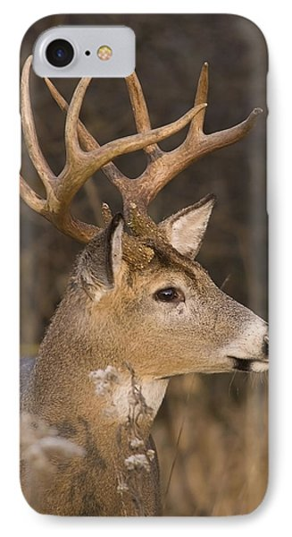 Buck Portrait IPhone Case
