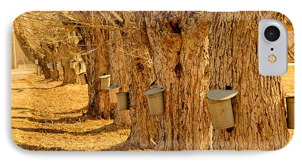 Buckets Of Gold Phone Case by Melanie Leo