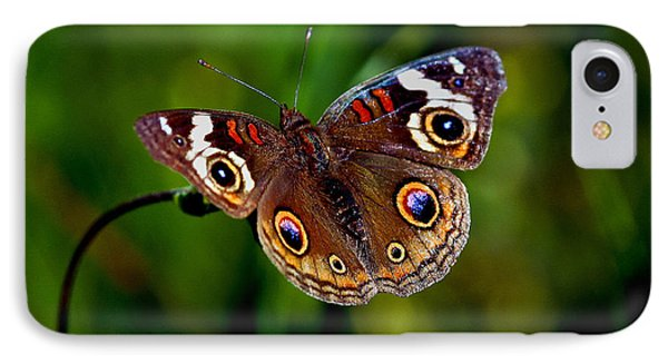 IPhone Case featuring the photograph Buckeye Butterfly by Mitch Shindelbower