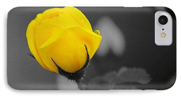 Bud - A Splash Of Yellow Phone Case by John  Greaves