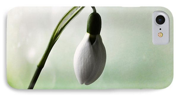 Budding Snowdrop  IPhone Case by Terence Davis