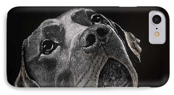 Buddy IPhone Case by Kathleen McCarthy