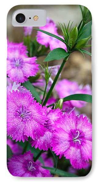 Buds And Blooms 1 IPhone Case