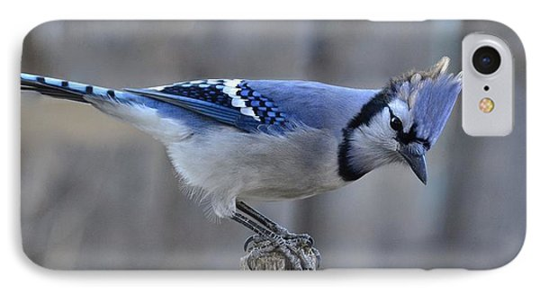 Buejay On A Handle S1 IPhone Case