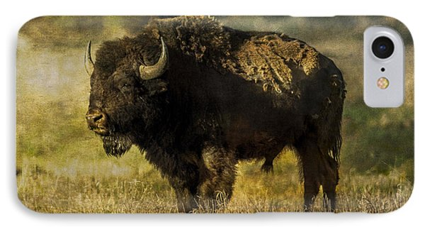 Buffalo 2 IPhone Case