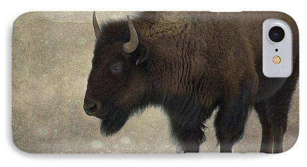 Buffalo IPhone Case by Juli Scalzi