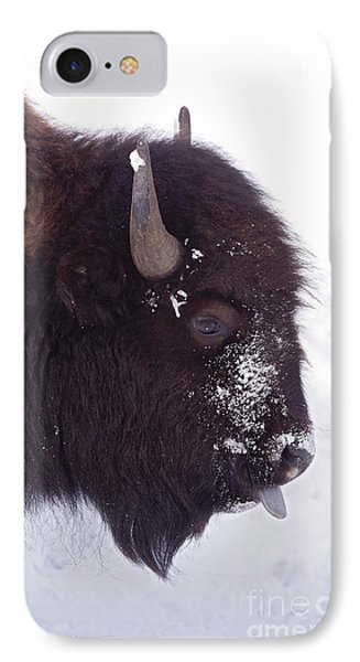 Buffalo In Snow   #6983 IPhone Case by J L Woody Wooden