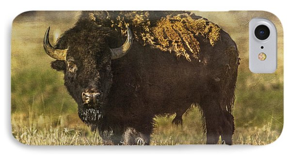 Buffalo IPhone Case
