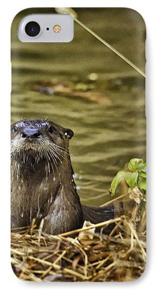 Buffalo National River Otter  IPhone Case