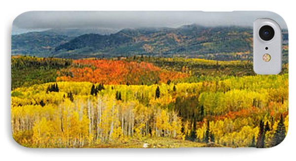 Buffalo Pass Steamboat Springs Co IPhone Case
