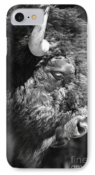 Buffalo Portrait Phone Case by Robert Frederick