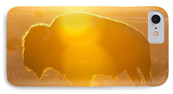 Buffalo Sunrise IPhone Case by Kevin Bone
