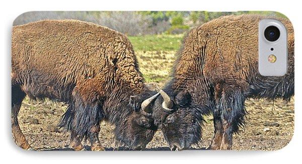 Buffaloes At Play IPhone Case