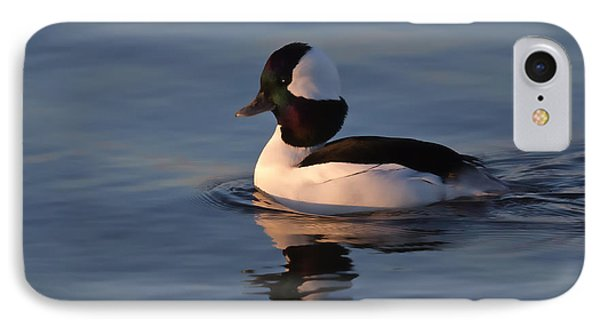 Bufflehead Duck IPhone Case