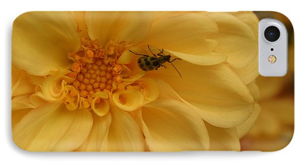 Bugged Dahlia IPhone Case