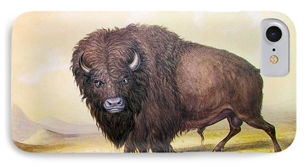 Bull Buffalo IPhone Case by George Catlin