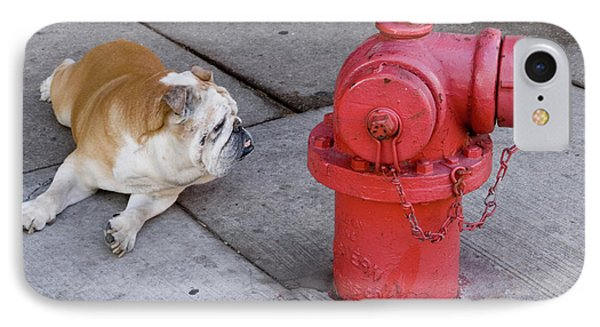 Bull Dog And The Fire Hydrant Standoff IPhone Case by Linda Matlow