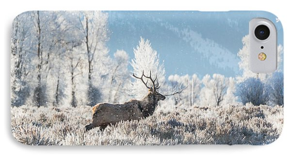 IPhone Case featuring the photograph Bull Elk At Winter Dawn by Yeates Photography