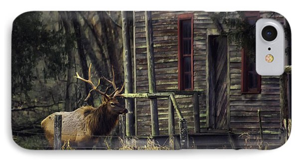 Bull Elk By The Old Boxley Mill IPhone Case