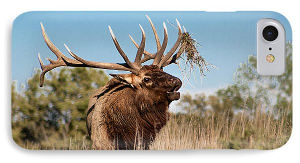 IPhone Case featuring the photograph Bull Elk Call by Dawn Romine