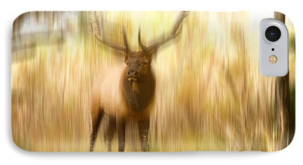 Bull Elk Forest Dreaming IPhone Case