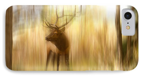 Bull Elk Forest Gazing IPhone Case by James BO  Insogna