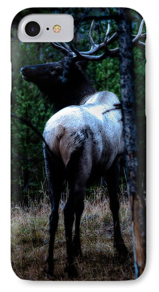 IPhone Case featuring the photograph Bull Elk In Moonlight  by Lars Lentz