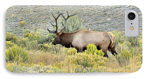 IPhone Case featuring the photograph Bull Elk In Rut by Yeates Photography