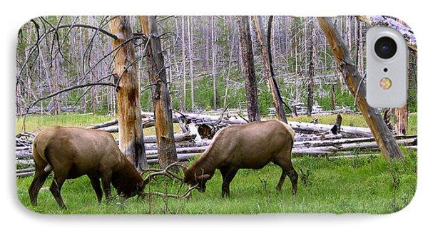 Bull Elk Sparing IPhone Case