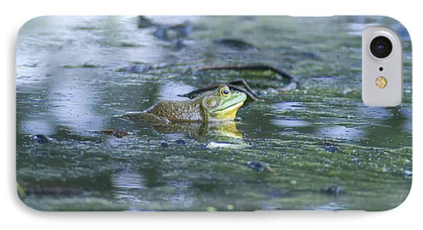 Bull Frog Pond IPhone Case