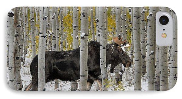 Bull Moose In Autumn IPhone Case by Leland D Howard