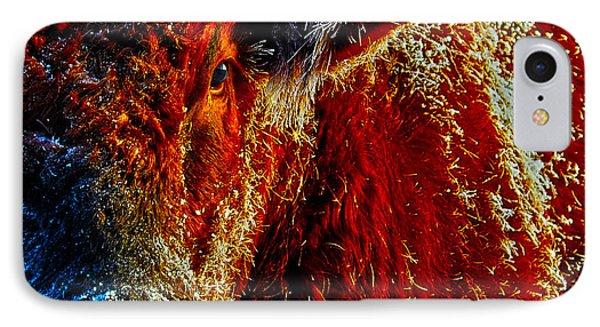 Bull On Ice IPhone Case by Amanda Smith