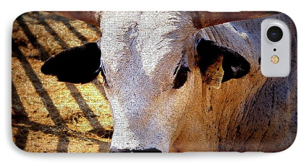 Bull Riders - Nightmare - Rodeo Bull IPhone Case