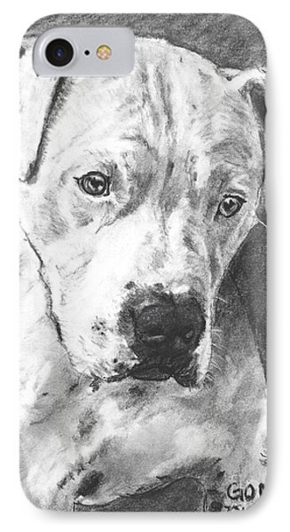 Bull Terrier Sketch In Charcoal  IPhone Case