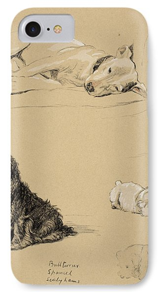 Bull-terrier, Spaniel And Sealyhams IPhone Case by Cecil Charles Windsor Aldin