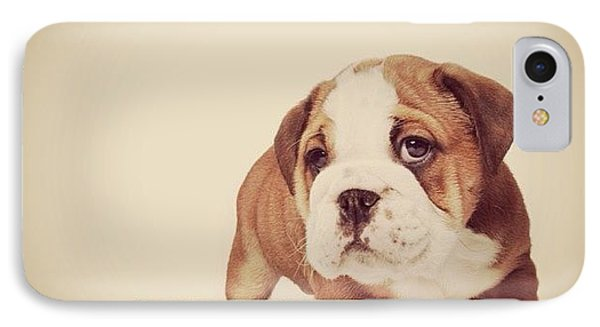 Bulldog Pup IPhone Case