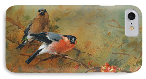 Bullfinches And Pyrus Japonica IPhone Case