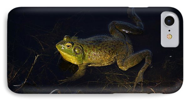 IPhone Case featuring the photograph Bullfrog by Janis Knight